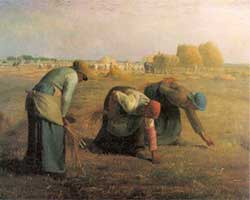 gleaners-in-the-field